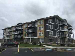 Brand New 2 Bedroom Apartments For Rent - Enfield - 6 Appliances