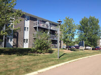 Right by the MALL! Huge 2bdm, 3NEW Appliances, Painted, DecFREE
