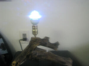 wood burning lamp