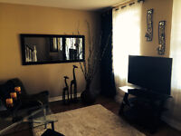All Updated House for Sale