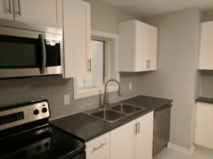 Beautifully Renovated Four Bedroom Home Close to Downtown