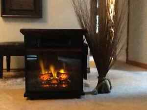 Space Heater / Fireplace combo