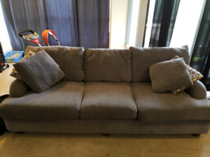 2 yr Old Couch