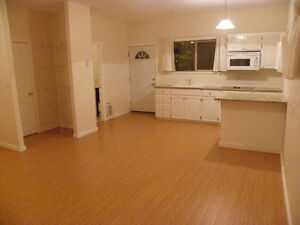 Modern and spacious basement suite on acreage. Incl everything!