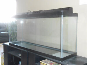 208L (55Gal) Aquarium w/ Accessories