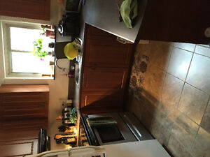 Large three bedroom apartment for rent - $1100 per month