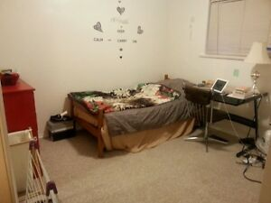 $450 September 1st Room rent for Int'l Student or Working Holida