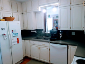 Kitchen cabinets, countertop, sink and faucet