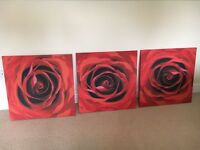 3 rose canvasses