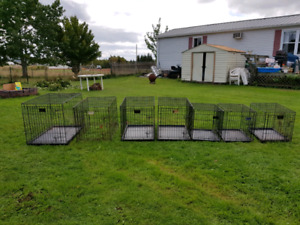 Wire dog crates and rabbit cages