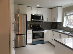 Newly Renovated Basement Suite near Lougheed Station