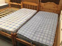 Pine single beds SALE
