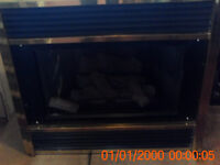 propane fireplace insert and mantel