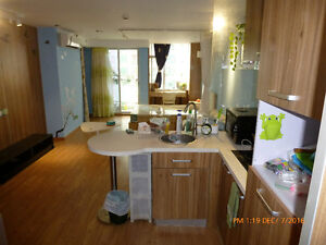 Guangzhou CHINA Apartment London Ontario image 1