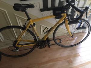 Cannondale Road Warrior 700
