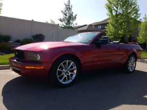2005 Ford Mustang Convertible * Low Kms*