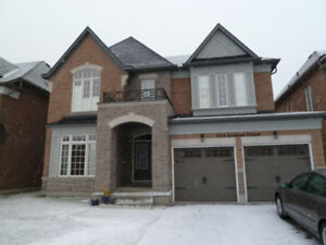 Altona/Finch, Pickering:- Newer 1 bedroom+Den. $1,250 (all incl)