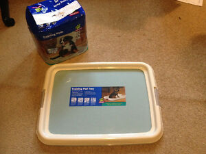 Training pad tray by Pet Smart with 50 count training pads