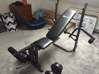 Pro Fitness Gym Bench