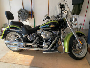 2011 Harley Davidson Softail Deluxe