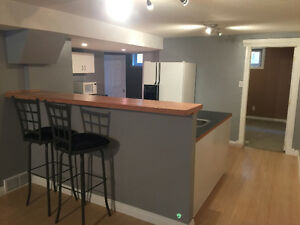 1 bdrm + den basement. Hazeldean / Ritchie area. Avail May 1