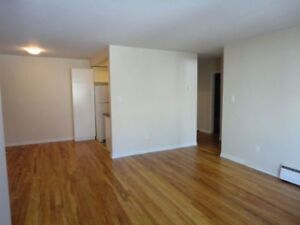 Large Spacious  One Bedroom in Quiet Secure Building