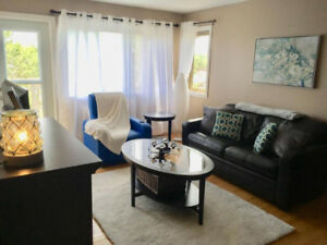Beautiful Apartment For Rent (Furnished Option Available)