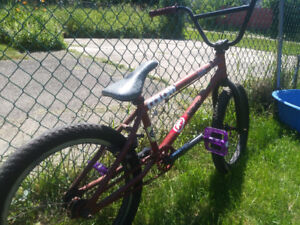 Custom Kink Gap BMX