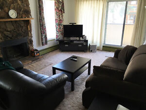 1 bedroom for rent in a 2 bedroom furnished apartment from June