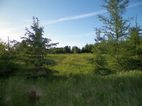 Beautiful building lot on Selkirk Rd, Lot 42, Eastern PEI