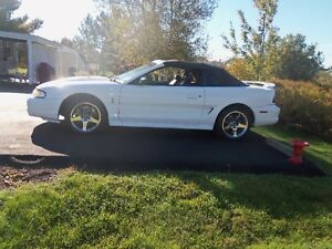 1997 Supercharged SVT Cobra Mustang  9 days left before storage