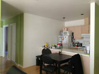 May-August Sublet 2 min from McGill Campus