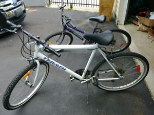 2 bikes 40$