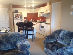 2 bed 2 bath Condo in downtown area for rent