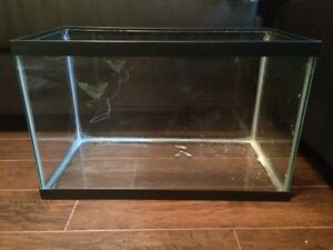 Hamster cage, accessories and food $100 obo