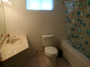 ALL INCLUSIVE!  2 Bedrooms Available!! London Ontario image 4