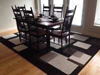 Area Rug - Immaculate Condition - Like New