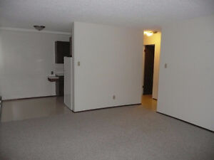 One Bedroom Suite in the Heart of Old Strathcona Edmonton Edmonton Area image 5