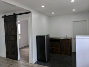 1 bedroom renovated apartment is for rent from march 1st