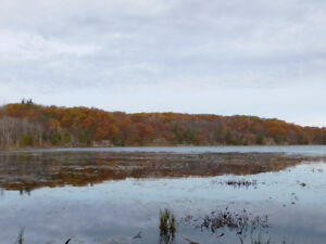 6.5 acre Waterfront property 35 minutes north of Kingston