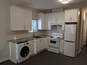 Newly-renovated 2 bedroom suite (above ground)