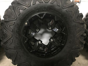 Maxxis Bighorn 2.0 Studded Tires and Rims