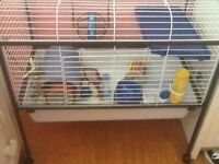 Huge Rabbit/Guinea/Bird Cage - Nearly New - Southfields