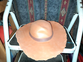 For Sale Disney On Ice Woody Cowboy Hat