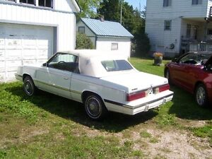 1985 Dodge Other classic Convertible