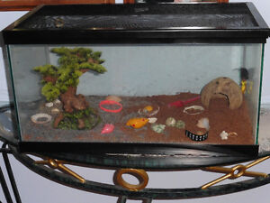 15 Gallon Fish/Lizard, etc. Tank, Heated Bottom with accessories