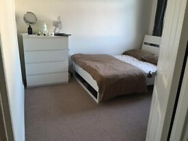 ***LARGE DOUBLE ROOM AVAILABLE IMMEDIATELY ****