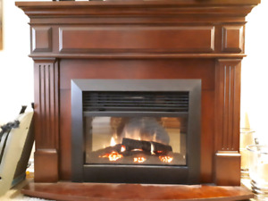 Electric Fireplace & Mantel