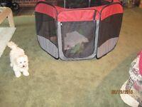 Portable folding puppy playpen