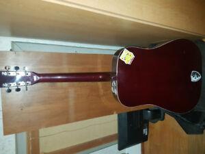 Raven Acoustic Guitar